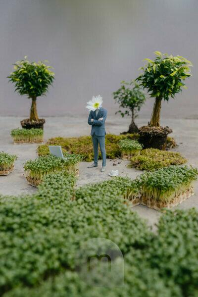 Businessman figurine with flower head standing park